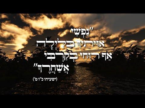 ישראל ורדיגר ומקהלת נרננה - נפשי